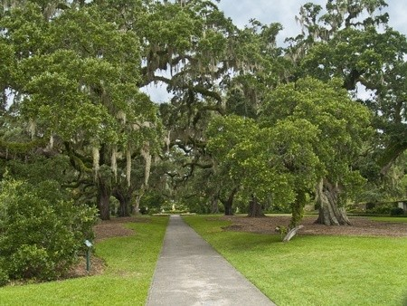 The Live Oak Garden at Brookgreen Gardens