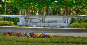 Homes for Sale at Dunes Club